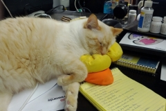 Patch Sleeping - Again
